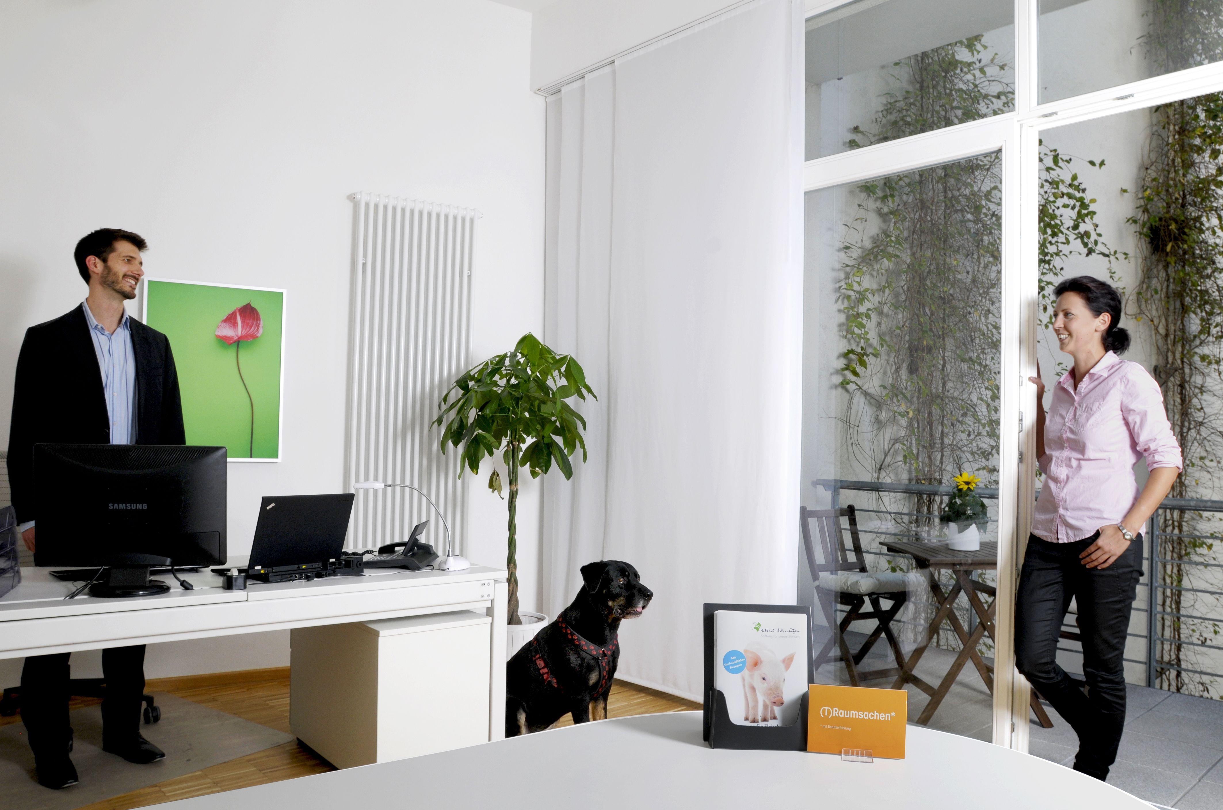 Design Arbeitszimmer ~ Albert schweitzer stiftung berlin arbeitszimmer des vorstands