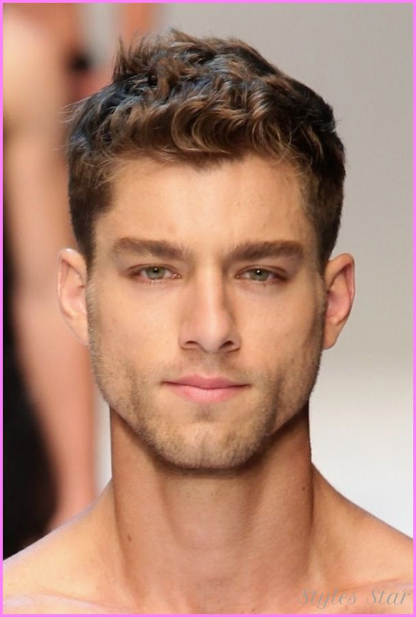 Hairstyles For Men With Curly Hair Alluring Cool Short Haircuts For Guys With Thick Curly Hair  Stars Style