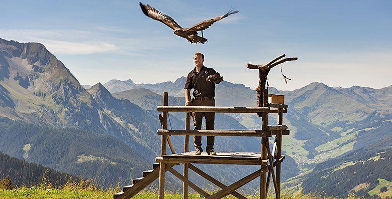 Adlerbühne Ahorn bei Mayrhofen