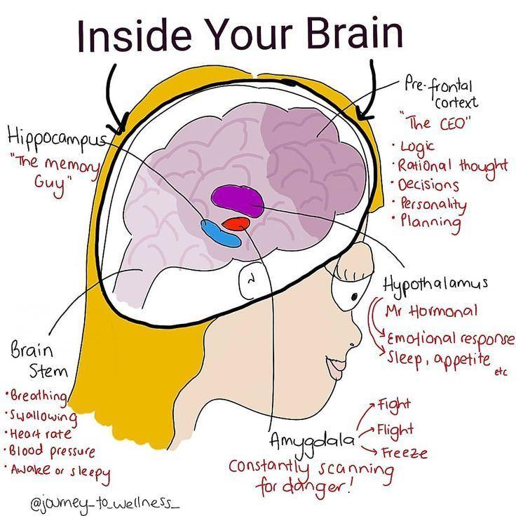 Neuroscience - Global Mental Health