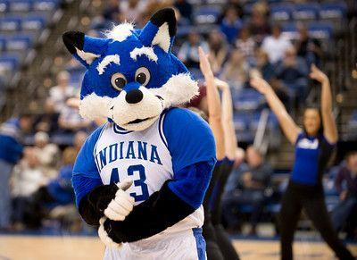 Sycamore Sam Indiana State Indiana State Indiana Smurfs