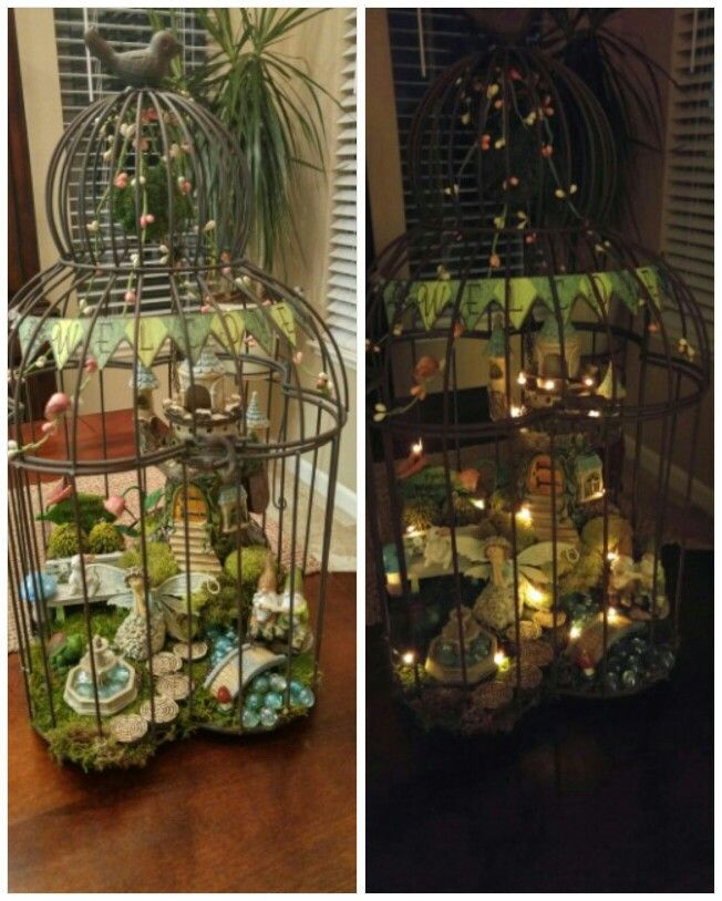 Fairy Garden In A Birdcage With Led Lights I Bought