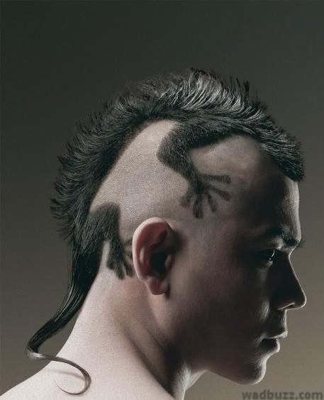 Lezards And Other Dragons As A Haircut Lizard Haircut Crazy Hair Creative Hairstyles