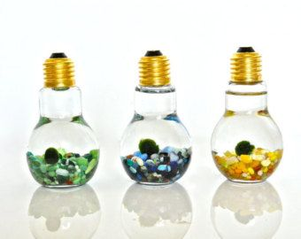 Light Bulb Jars On Etsy A Global Handmade And Vintage Marketplace Light Bulb Jar Ball Lights Light Bulb Aquarium