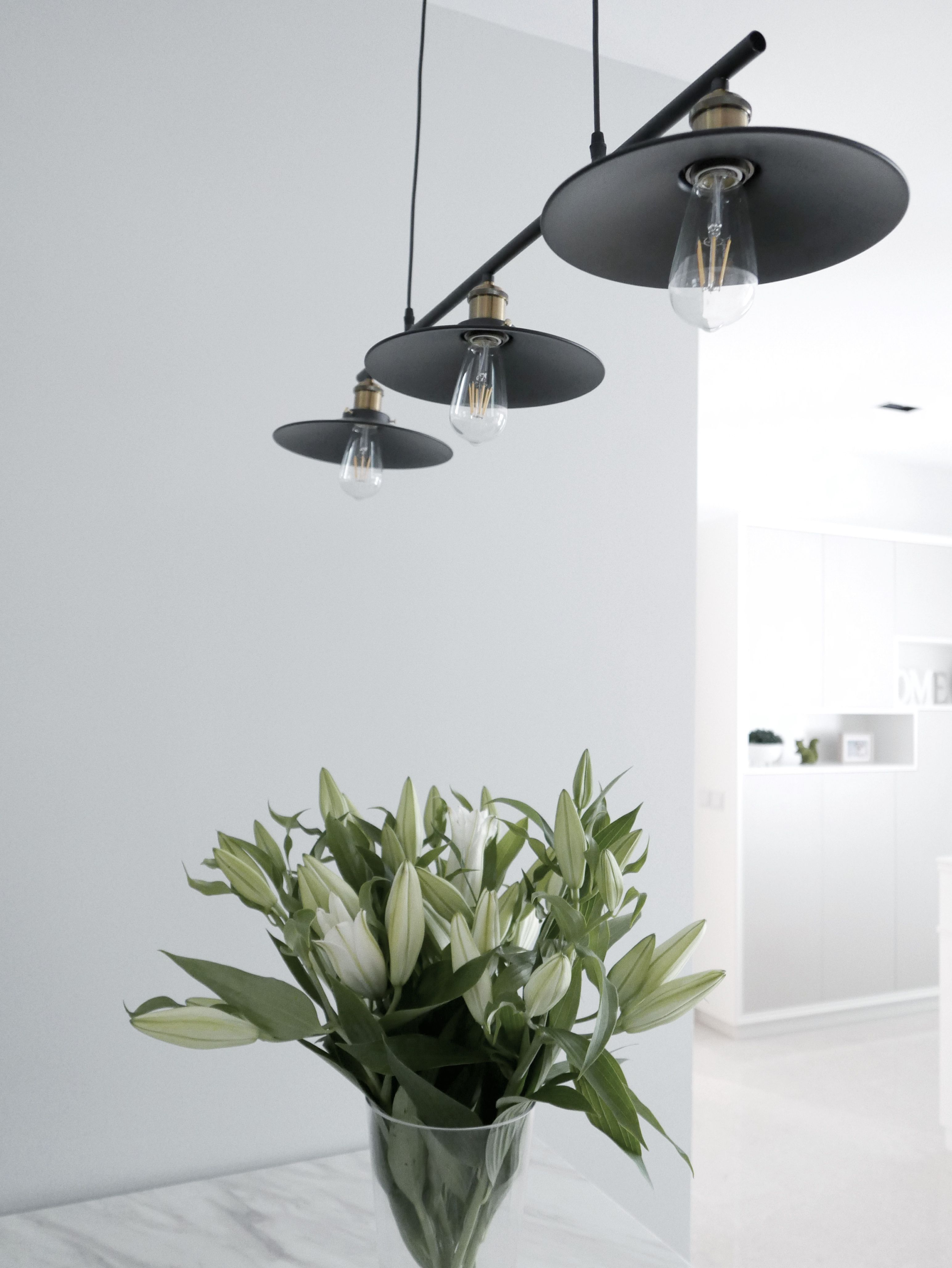 Ceiling lights + Plant | Ceiling lights, Interior ...
