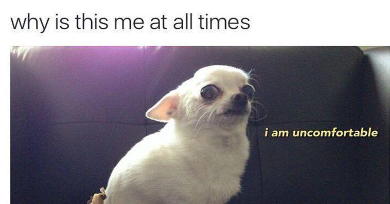 24 Memes Anyone Who's Awkward AF Will Probably Awkward-Laugh At