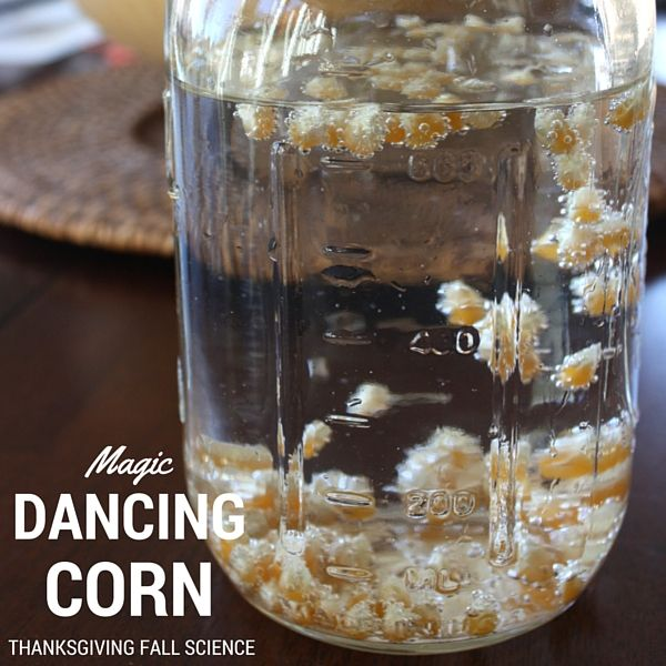 Magical fall science with easy to set up dancing corn ...