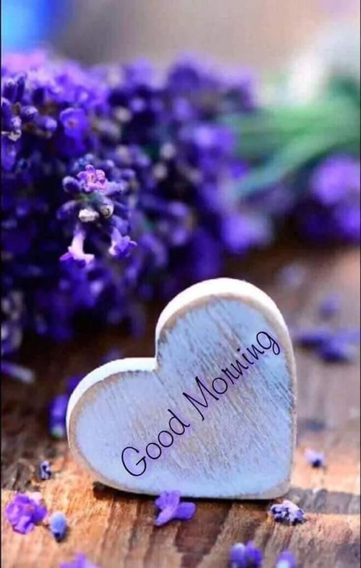 Good Morning Wishing You A Beautiful Day Quote Beautiful Day Quotes Good Morning Quotes Good Morning Photos