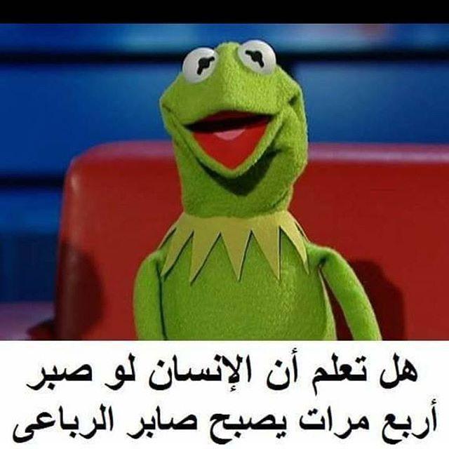معلومه مفيده معلومات معلومه Information Info Infographics Infographic نصائح فيديوات فيديوهات Funny Picture Jokes Funny Dude Arabic Funny