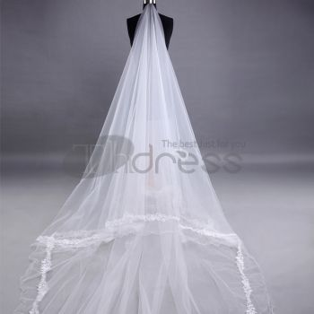 The Upscale Bride Embroidered Lace Wedding Veil