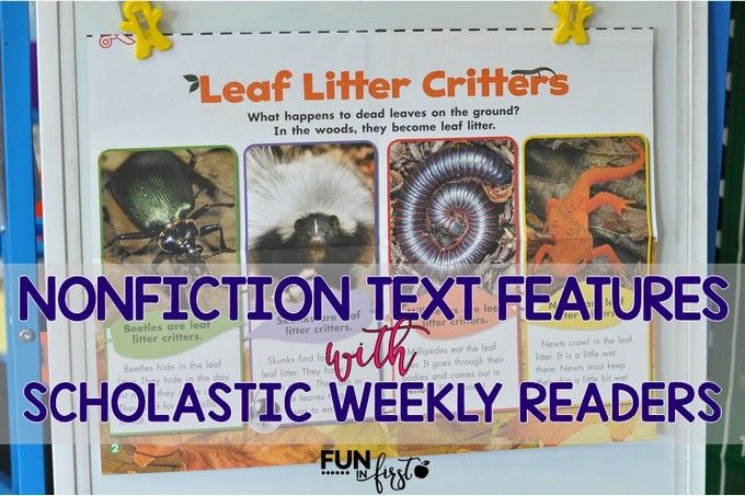 Nonfiction Text Features Using Scholastic Weekly Readers - Fun in First