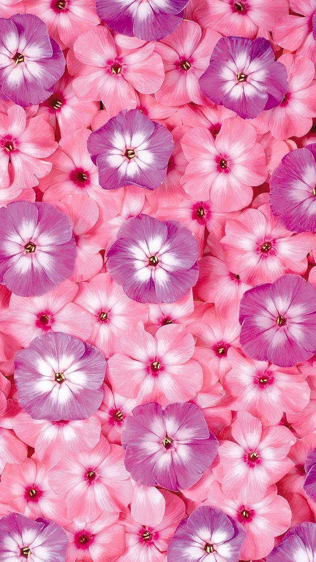 Flowers Pattern Iphone Wallpaper Hd Flower Iphone Wallpaper Pink Wallpaper Iphone Flower Wallpaper