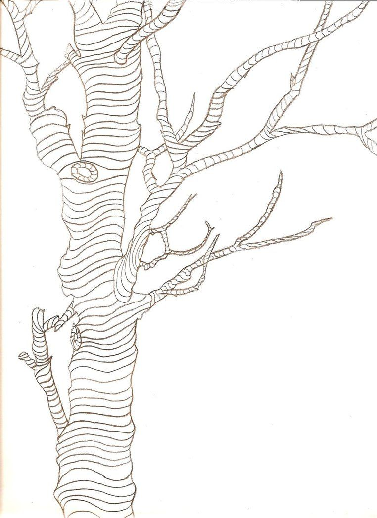 Contour Line Drawing Of A Plant : Image result for cross contour drawing of trees about