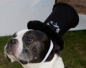 Upcycled Steampunk Dog Clothing, Dog Groom Costume, Black Top Hat and White Bow Tie, Halloween, Couture Pet Costume