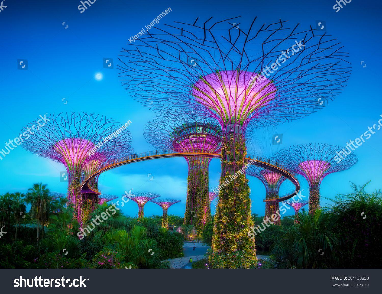 d3e8f9a19c714d418993b6f6262573e6 - Supertree Grove Gardens By The Bay Singapore