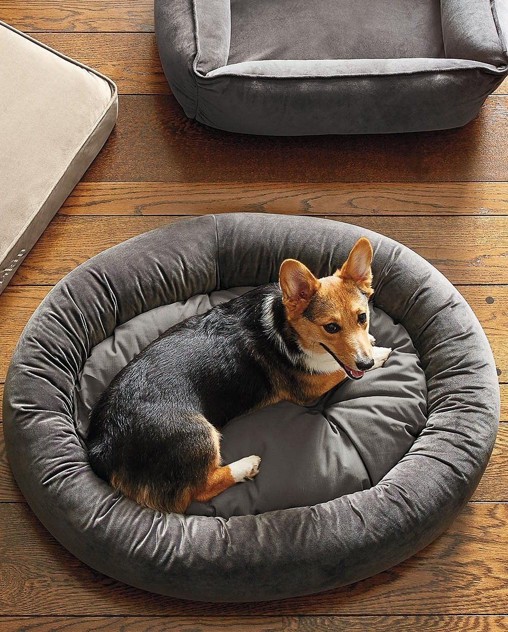 Ashton Donut Super Loft Fiber Pet Bed Pets, Dog bed