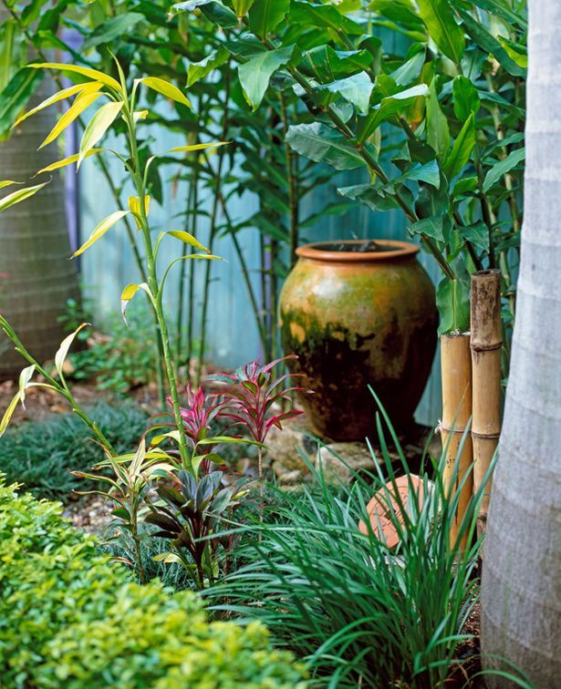 Bamboo Is Booming   Hereu0027s My Pick Of The Best. Japanese GardensJapanese ...