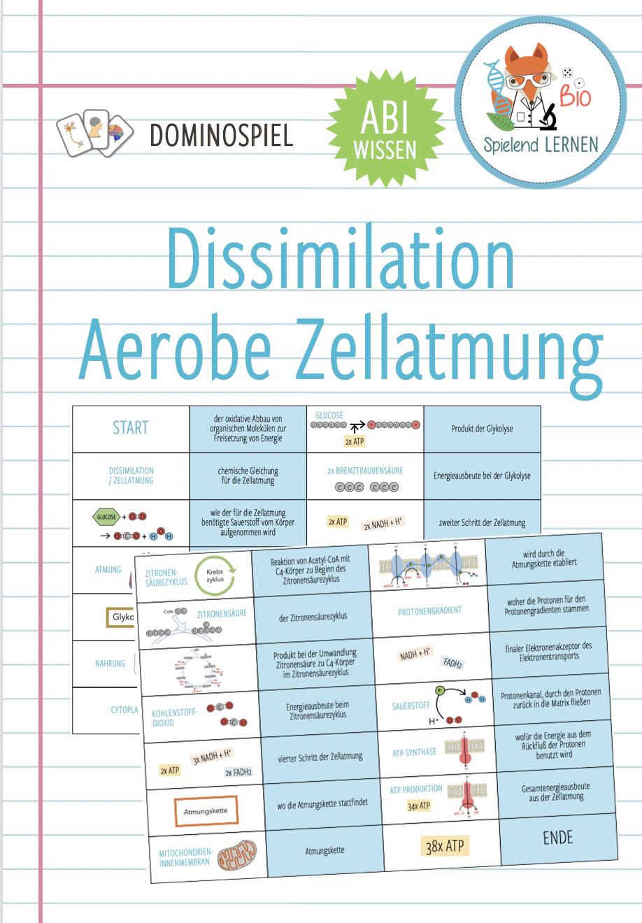 Dissimilation aerobe Zellatmung – Domino Spiel Abitur ...