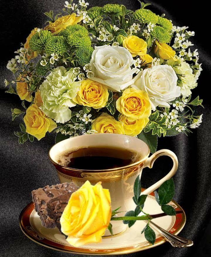 rost fogyókúra tea