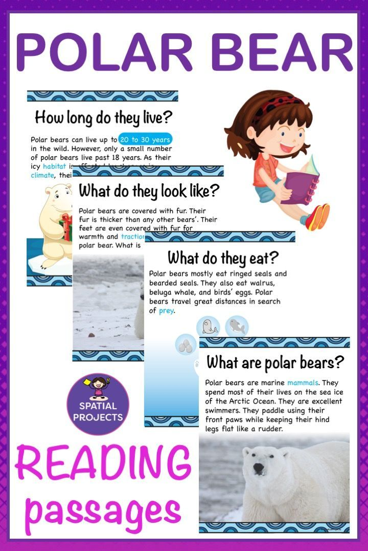 All About Polar Bears Nonfiction Unit Elementary science