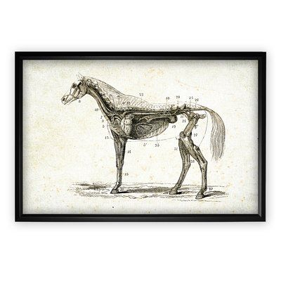 Darby Home Co 'Equine Sketch XXVIII' Wood Framed Oil Painting Print on Wrapped Canvas
