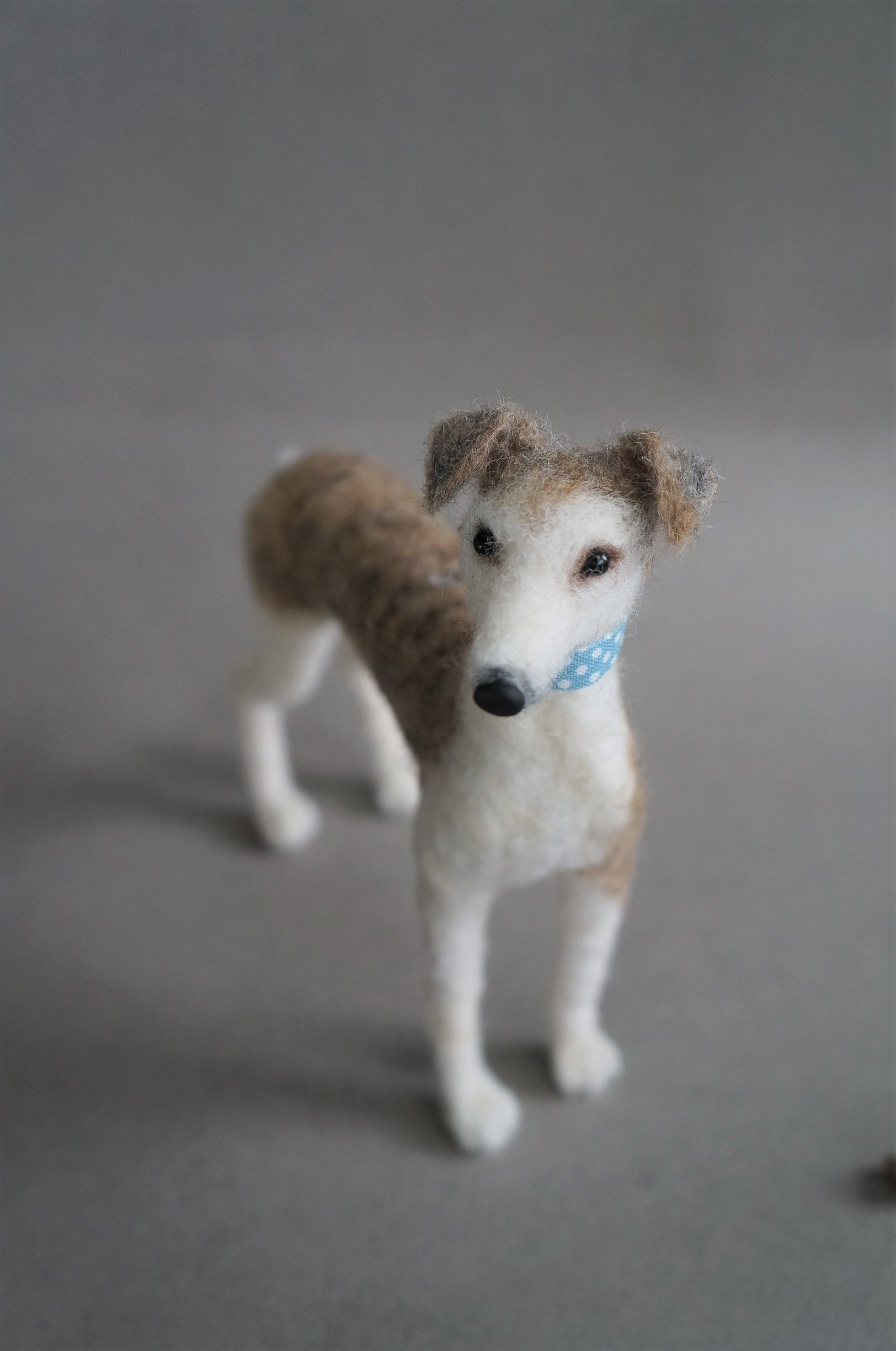 A Whippet I felted found a new home in NY.