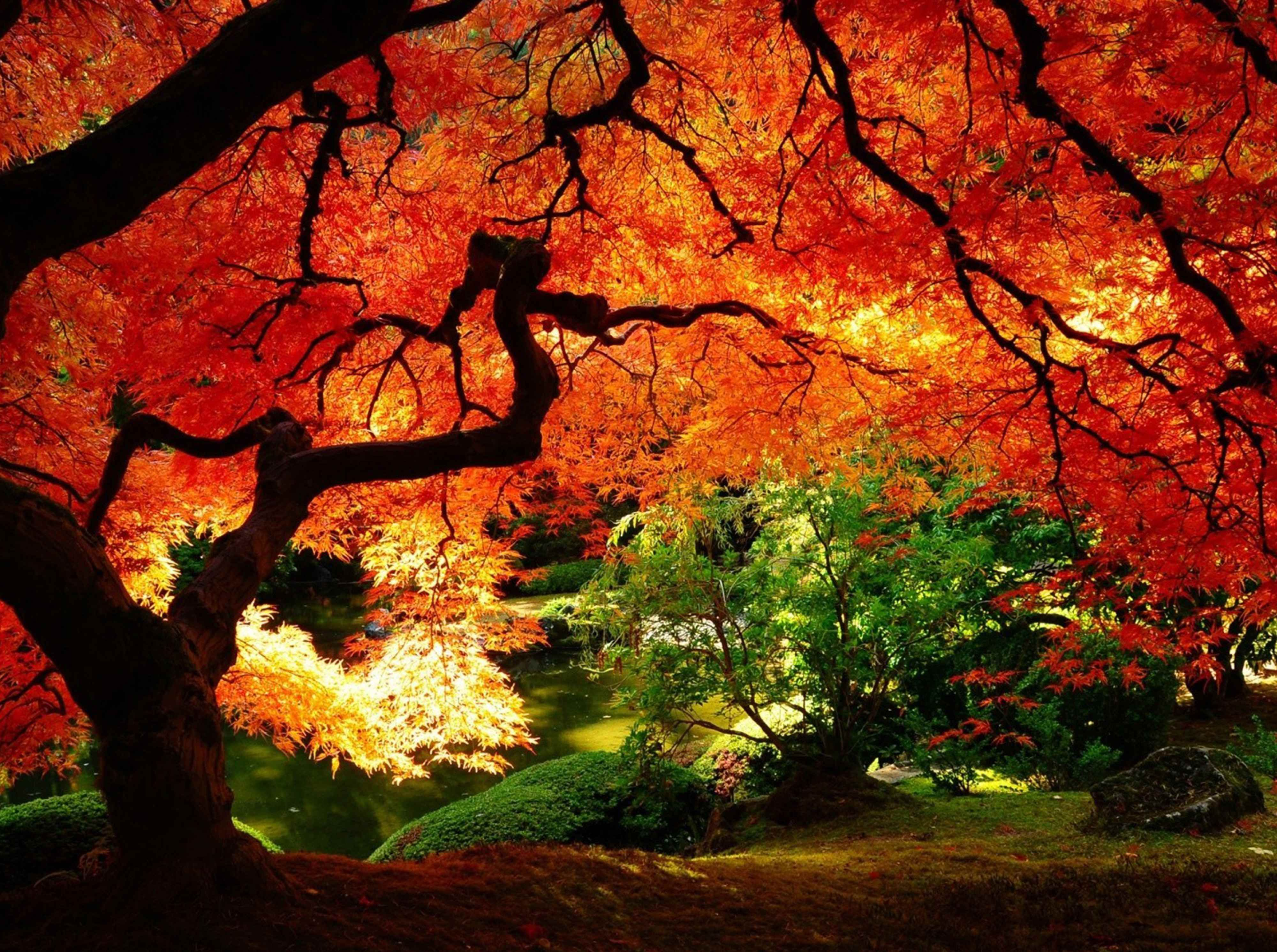 Pin By Christal On Charming Scenery Autumn Landscape Autumn Scenery Beautiful Nature