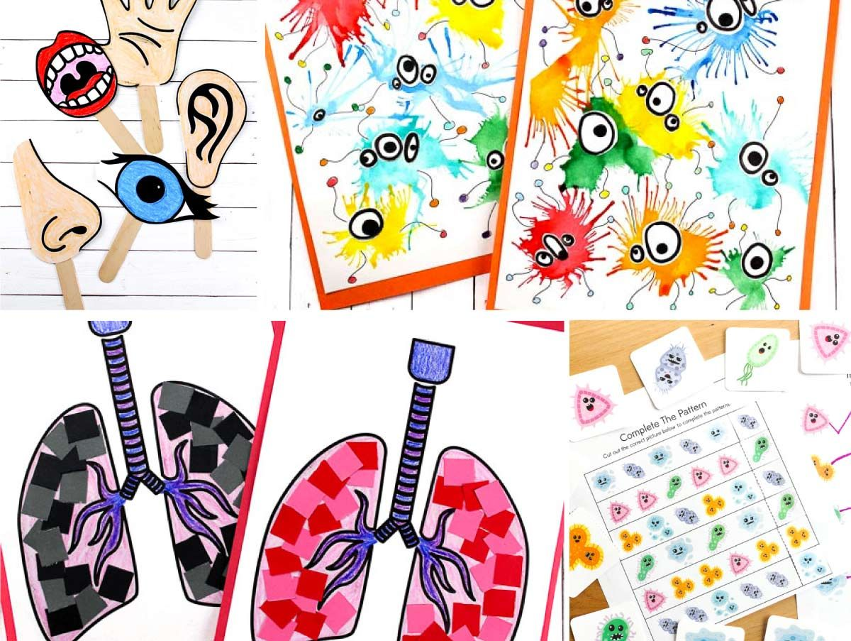 7 Interesting Human Body For Kids Crafts Activities