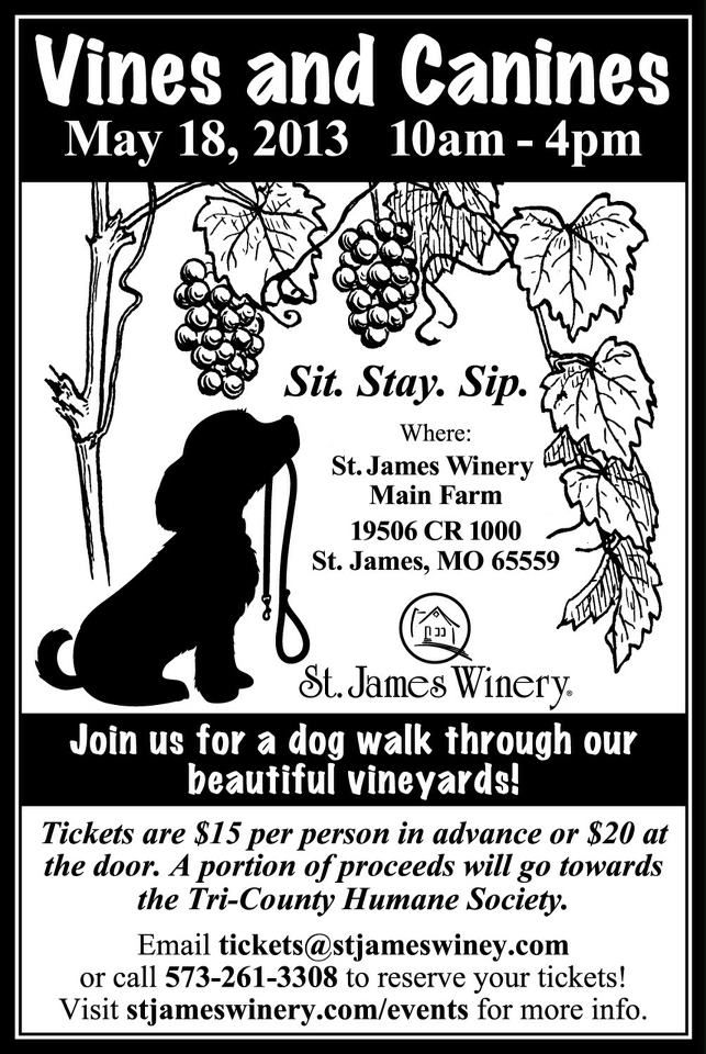 Click here for info on Dog Walk Tickets! Come drink some wine and enjoy the day with your favorite pooch #vineyarddogwalk #stjameswinery