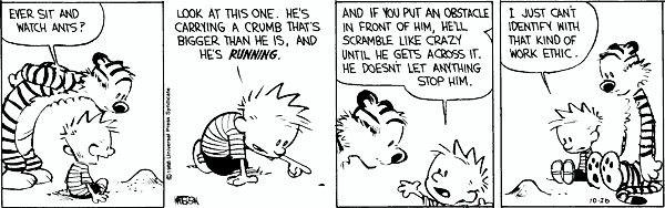best of calvin and hobbes philosophy