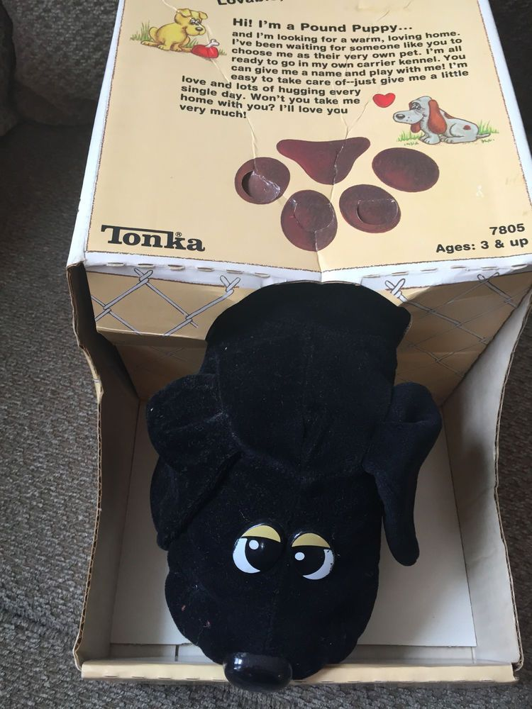 Tonka Pound Puppy Black In Box 1985 7805 Pound Puppies Puppies Tonka