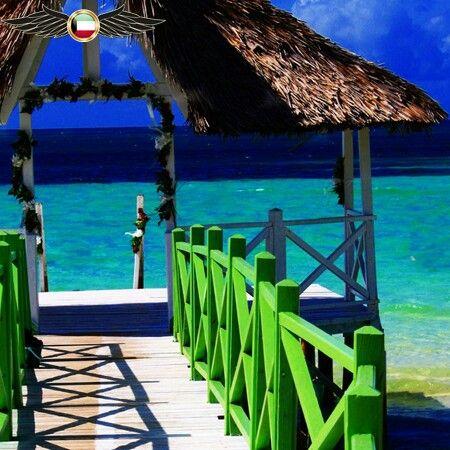 جاء في الترتيب الرابع 4 Cayo Coco Cuba 4 جزيرة كايو كوكو كوبا كايو كوكو هي جزيرة في وسط كوبا Outdoor Patio Umbrella Outdoor Structures