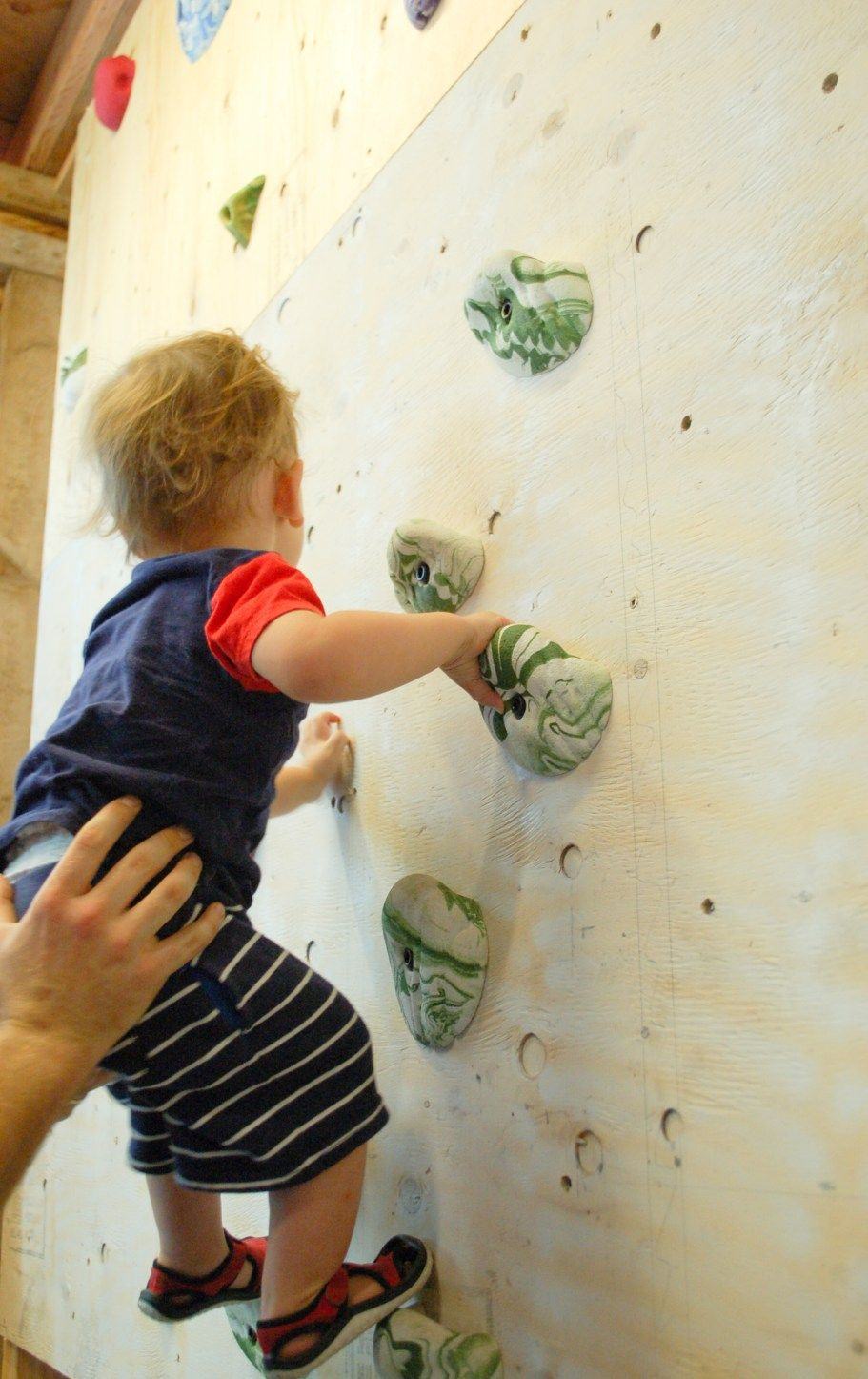 diy rock climbing wall holds