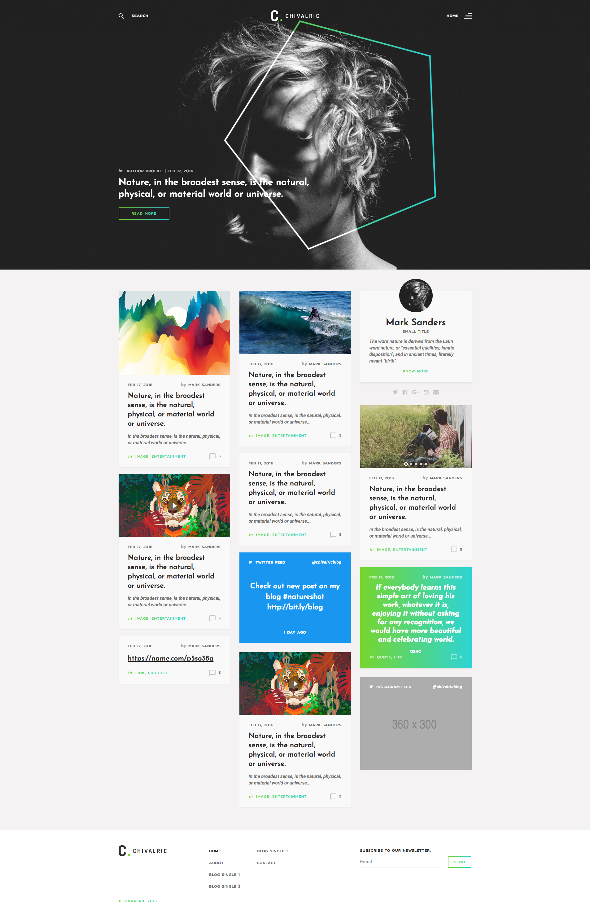 Chivalric Personal Blog Html Template It S Modern Design And