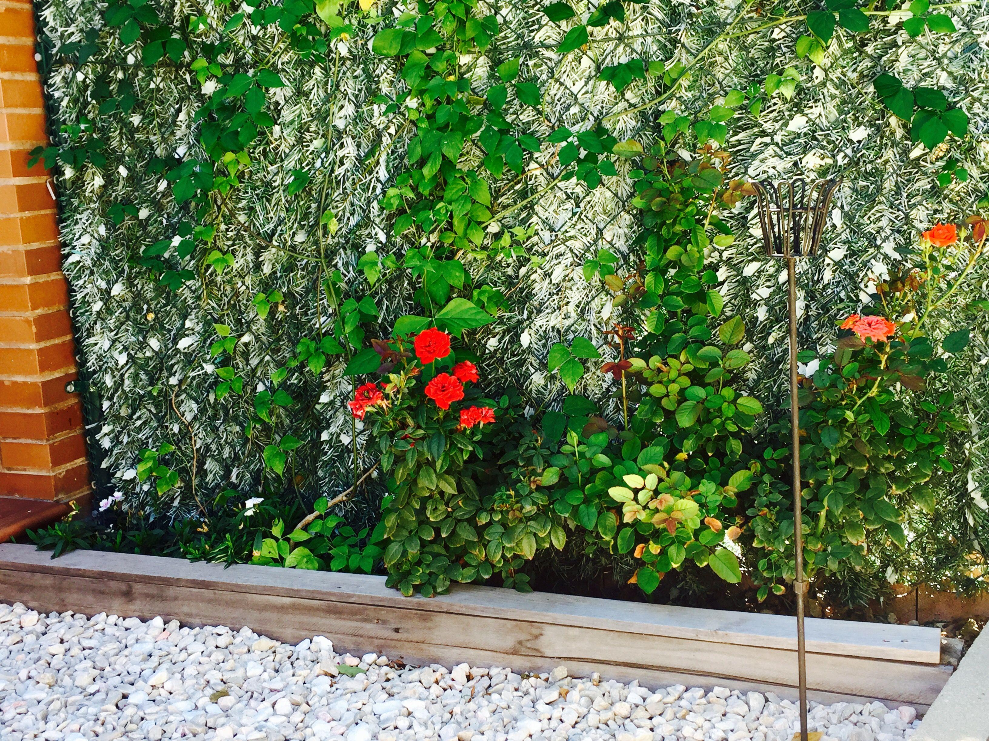 Arriate con palets patios pinterest palets y jard n - Arriate jardin ...