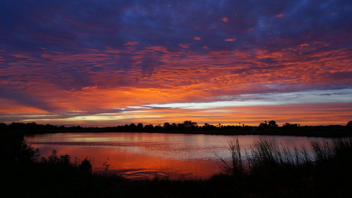Sunrise makes the clouds glow in bright colors above a still lake surrounded by tall grass and trees.