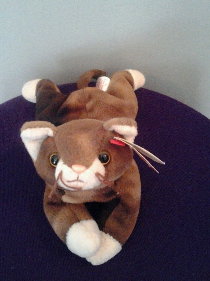 c53eafd9814 Pounce-1997-TY Beanie Baby-cat