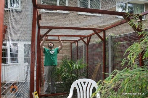 How To Build A Catio Part 2 With Images Catio Cat Enclosure Building