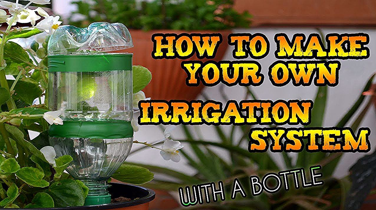 DIY  How to make your own DRIP IRRIGATION SYSTEM with a BOTTLE