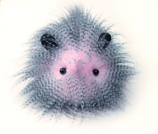 by Fuzziggle  Toy design Plush faux fur