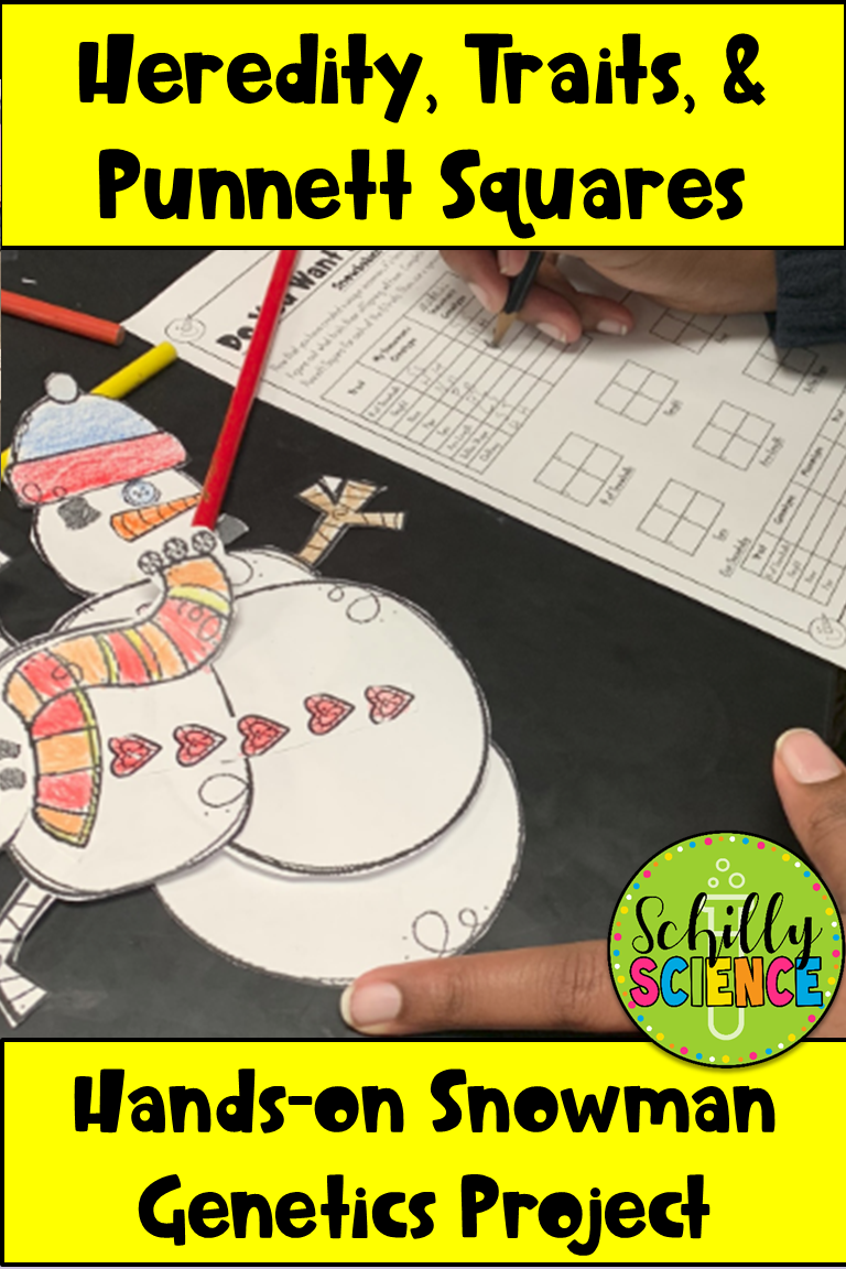 Snowman project parts 1 & 2 Teaching science