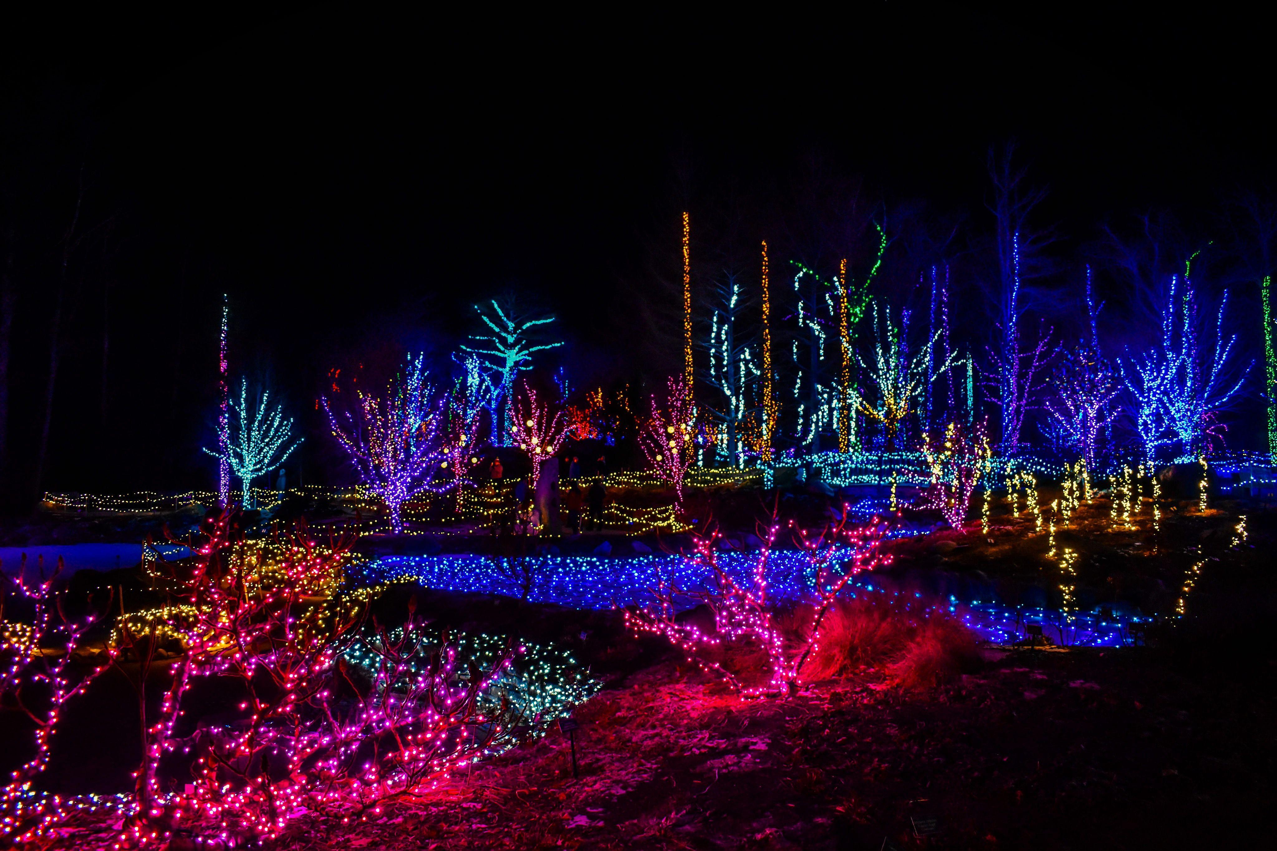 d3efa7b728ab0c667704508d4e31b0ac - Coastal Maine Botanical Gardens Maine Days