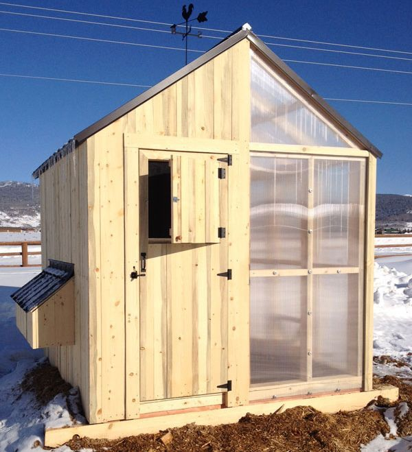 chicken coop greenhouse combined purelypoultry - Chicken Co Op Plans And Greenhouse