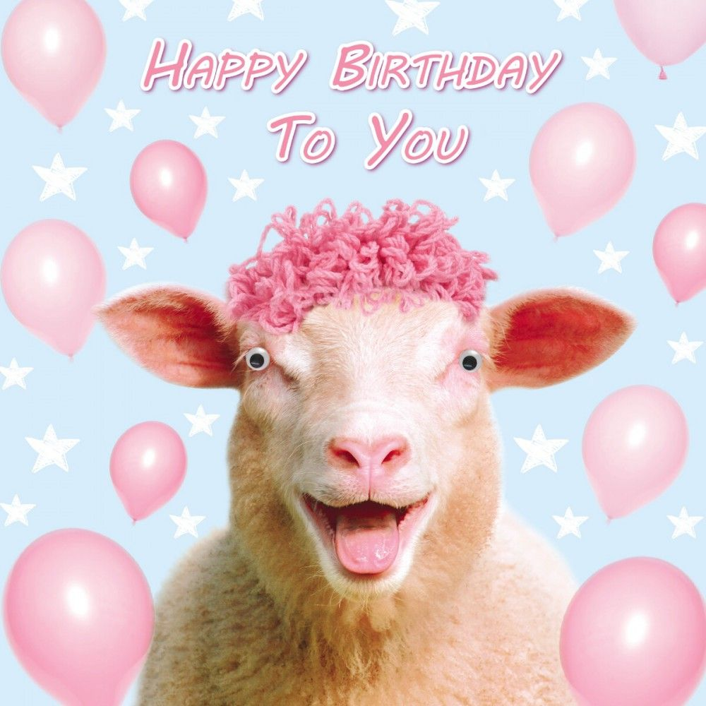 Happy Birthday Sheep Birthday Cards Happy Birthday Birthday