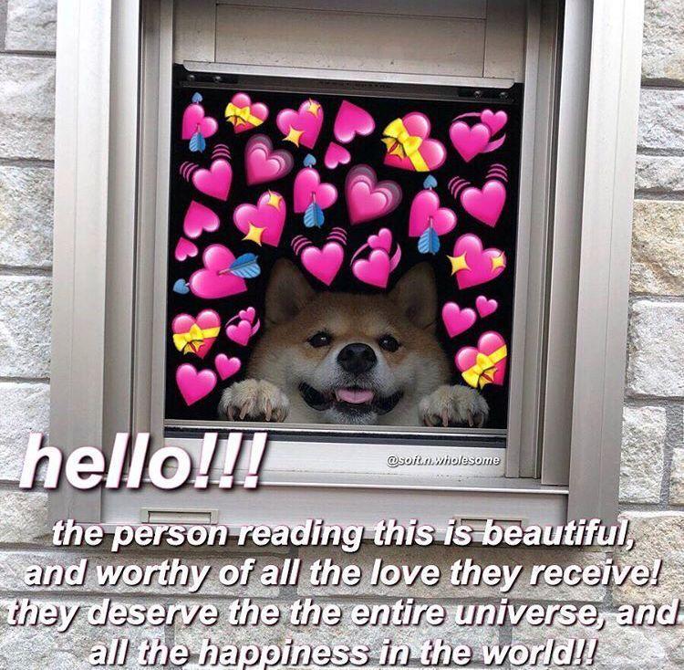 𝐅𝐋𝐈𝐍𝐆 (jenzie) CHAPTER FIVE in 2020 Cute love memes