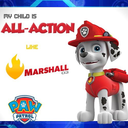 Quatang Gallery- Marshall Gallery In 2020 Paw Patrol Paw Patrol Party Paw