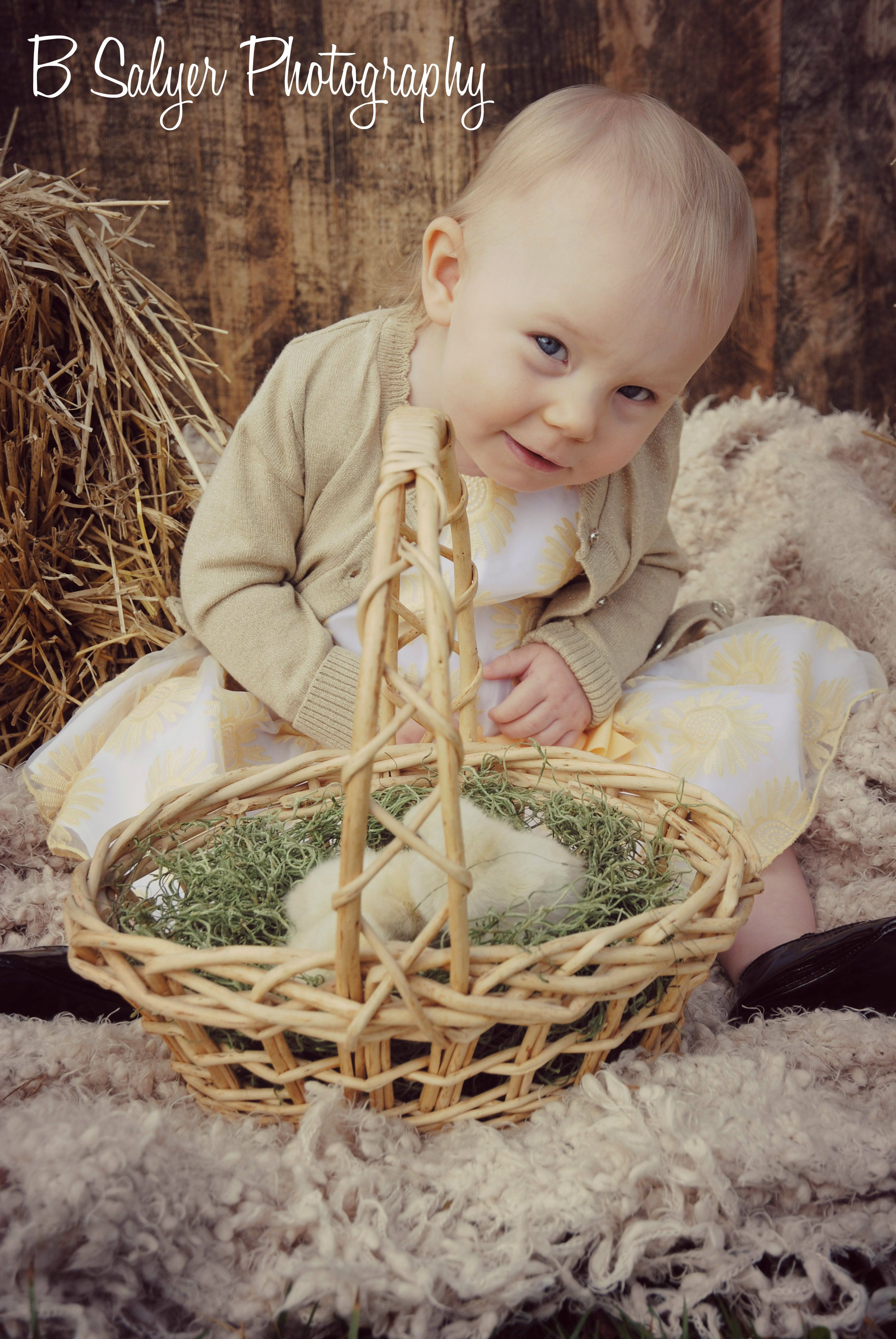 easter mini sessions with baby chicks