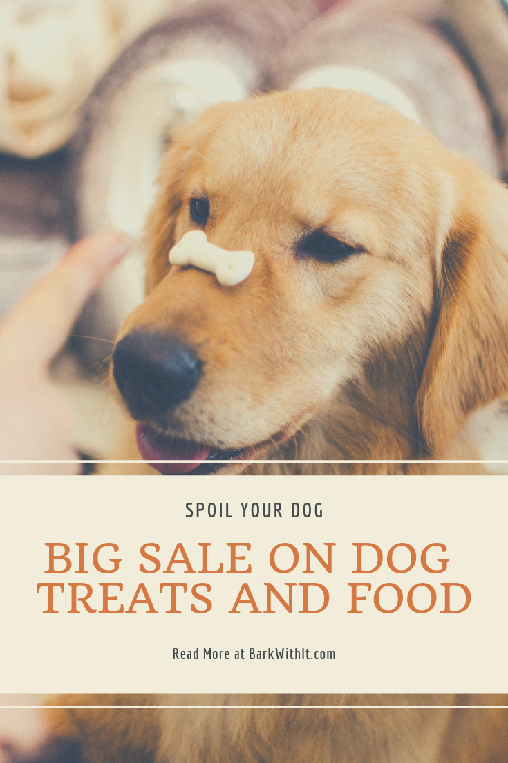 Best Sales At Chewy Dog Treats Dogs Free Dog Food