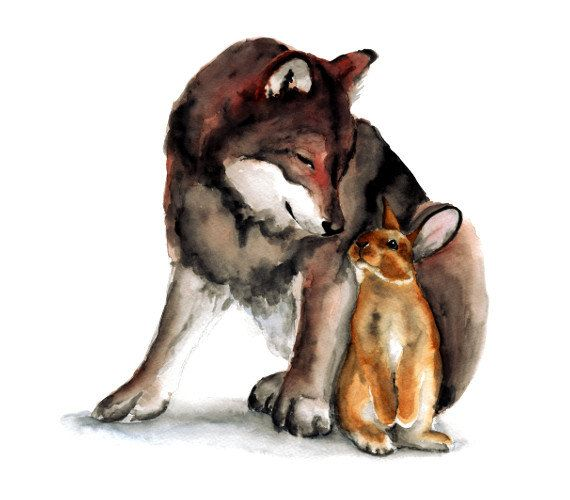 Wolf and rabbit