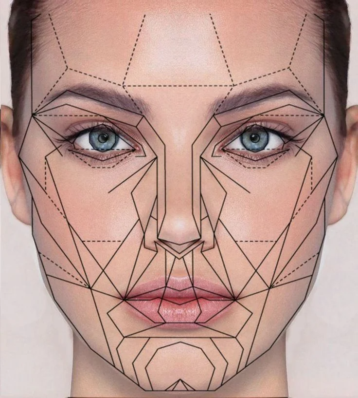 What Is The Golden Ratio Canva Learn Geometric Face Face Proportions Golden Ratio